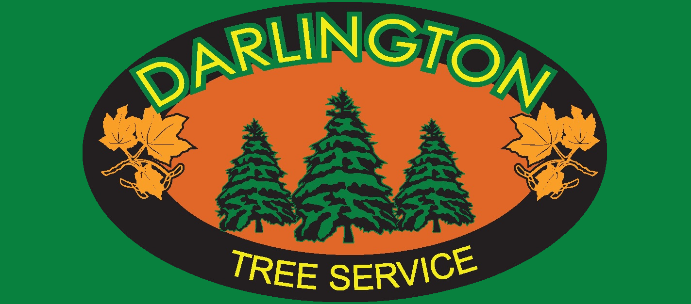Darlington Tree Service