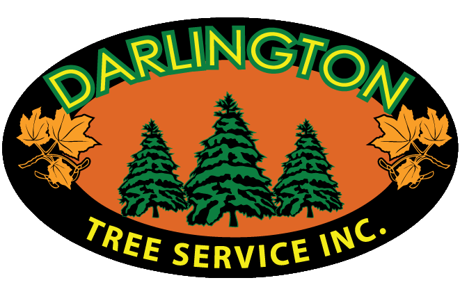 Darlington Tree Service Inc.
